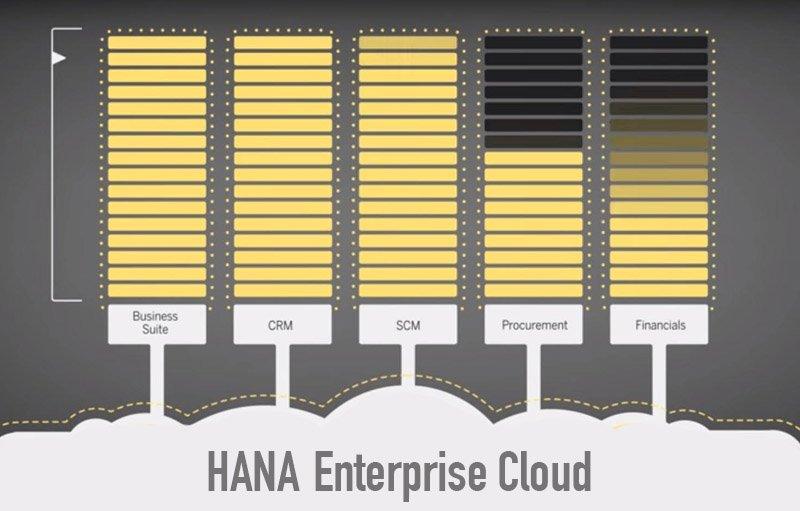 HANA Enterprise cloud