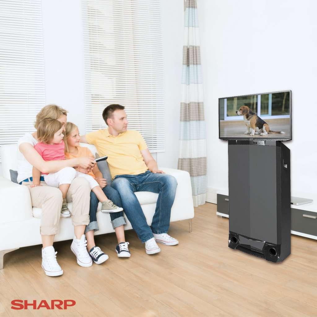 samm-multimedia-system